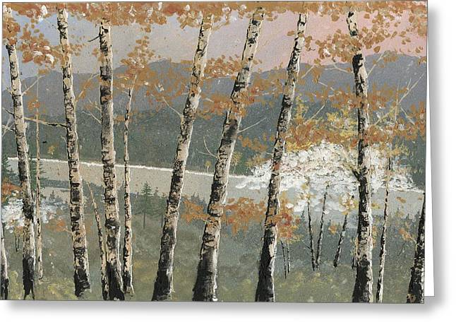 Birch Tree Greeting Cards - Birch Stand Greeting Card by John Wyckoff