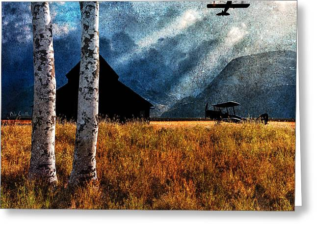 Summer Storm Greeting Cards - Birch Trees and Biplanes  Greeting Card by Bob Orsillo