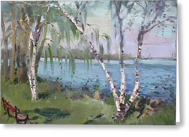 Birch Trees By The River Greeting Card by Ylli Haruni