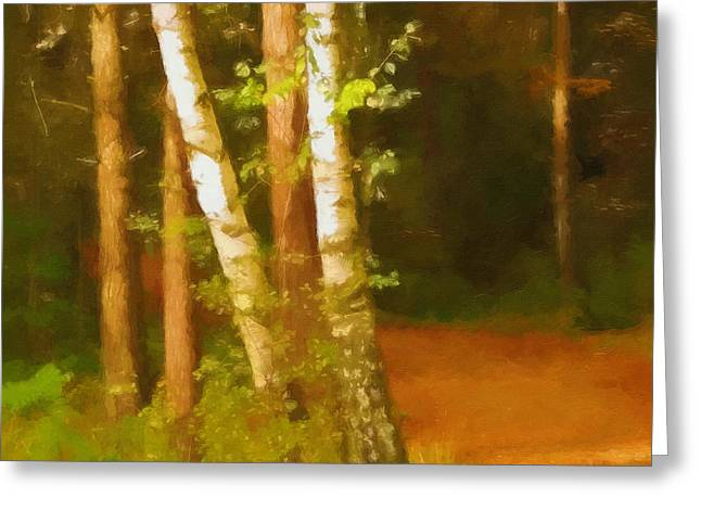 Fall Trees Greeting Cards - Birches in Fall Greeting Card by Lutz Baar