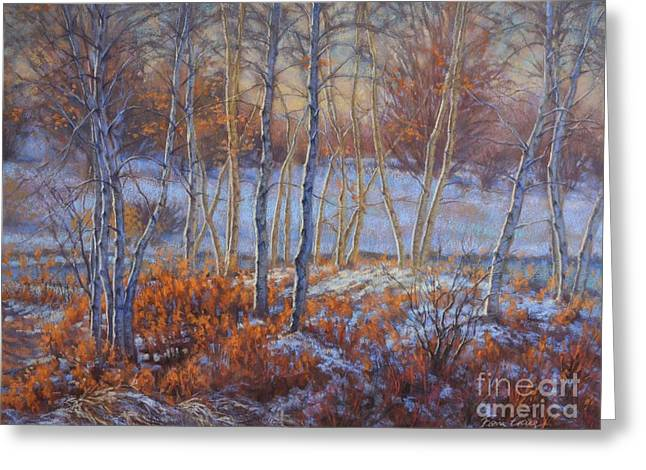 Snow Scene Landscape Pastels Greeting Cards - Birches in First Snow Greeting Card by Fiona Craig