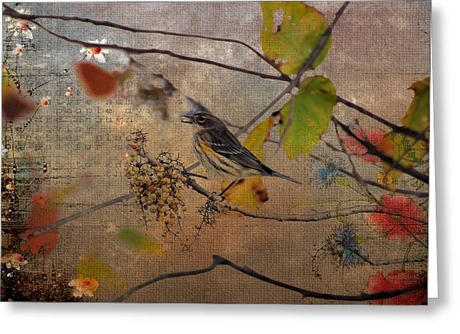 Feeding Birds Greeting Cards - Bird And Berries Greeting Card by Todd Hostetter
