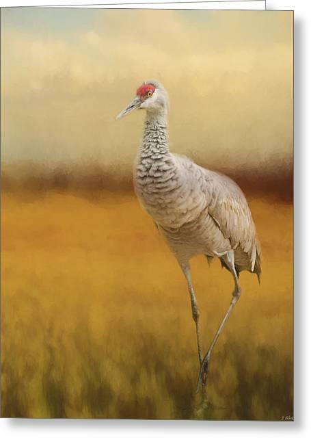 Bird Art - A Quiet Walk Greeting Card by Jordan Blackstone