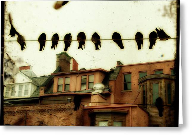 Row Of Houses Greeting Cards - Bird Cityscape Greeting Card by Gothicolors Donna Snyder