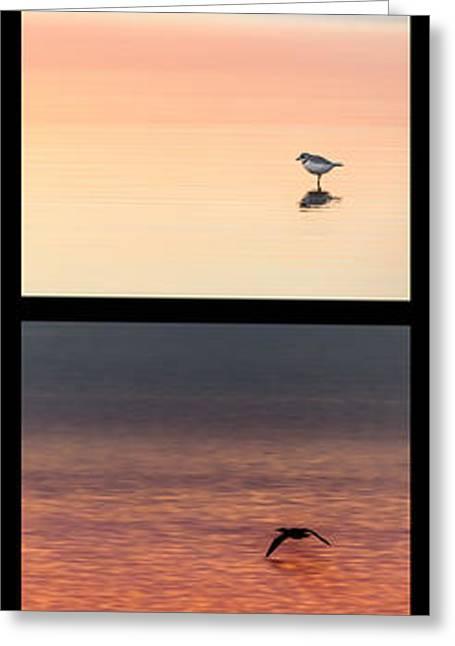 Mockingbird Greeting Cards - Bird Collage Portrait Greeting Card by Bill  Wakeley