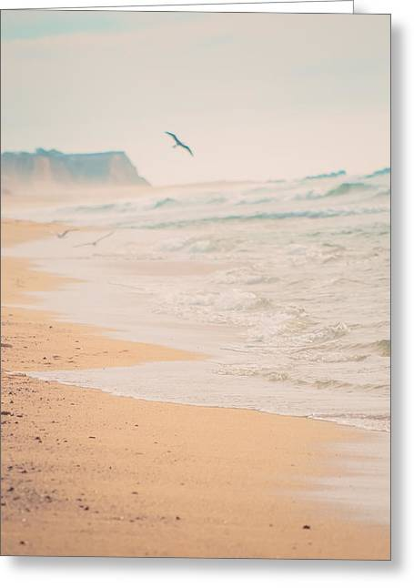 Moon Beach Greeting Cards - Bird Flying on Beach Horizon Greeting Card by Lynn Langmade