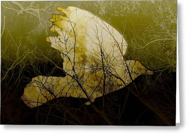 Bird Collage Greeting Cards - Bird III Greeting Card by Ann Powell