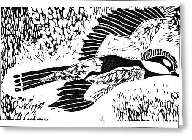 Lino Cut Drawings Greeting Cards - Bird Greeting Card by Keiskamma art project