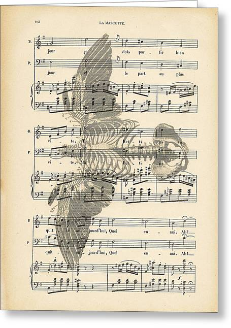 Naturalistic Greeting Cards - Bird Music Greeting Card by Nomad Art And  Design