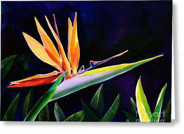 Strelitzia Paintings Greeting Cards - Bird of Paradise Greeting Card by AnnaJo Vahle