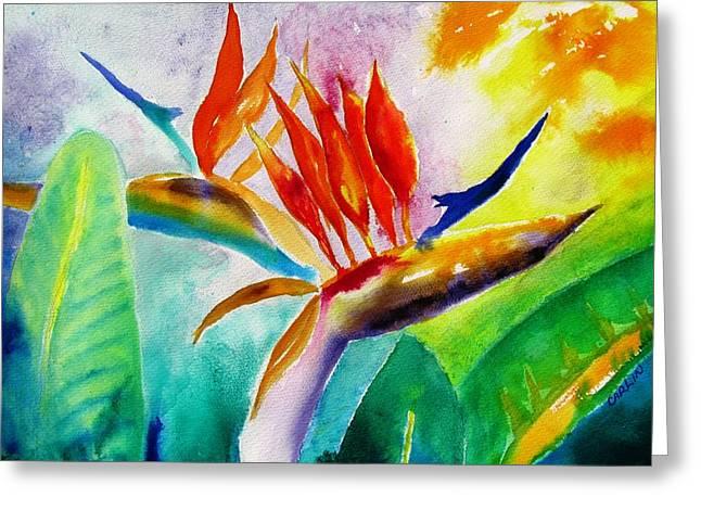 Carlin Greeting Cards - Bird of Paradise Greeting Card by Carlin Blahnik