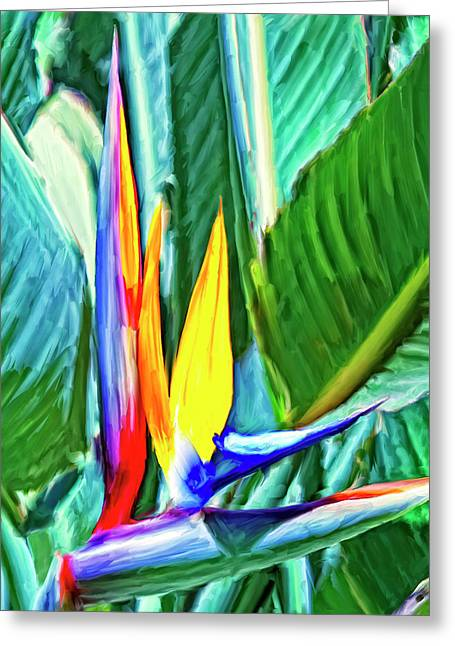 Bird Of Paradise Greeting Card by Dominic Piperata