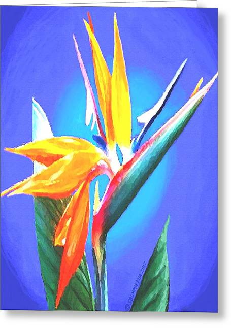 Exotic Pastels Greeting Cards - Bird of Paradise Flower Greeting Card by SophiaArt Gallery