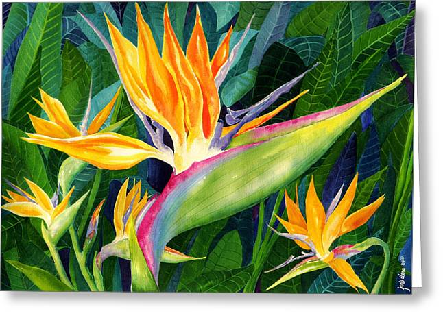 Tropical Flower Greeting Cards - Bird-of-Paradise Greeting Card by Janis Grau