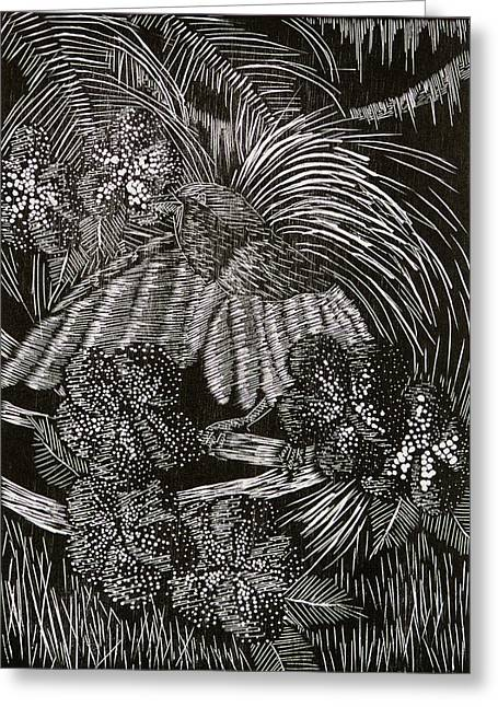 Engraving Pyrography Greeting Cards - Bird of Paradise Greeting Card by Jeanette K