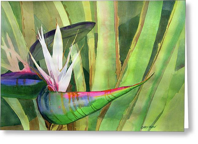 Bird Of Paradise Greeting Card by Kris Parins