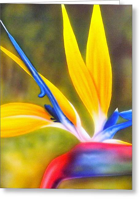 African Flower Greeting Cards - Bird of Paradise Revisited Greeting Card by Darren Robinson
