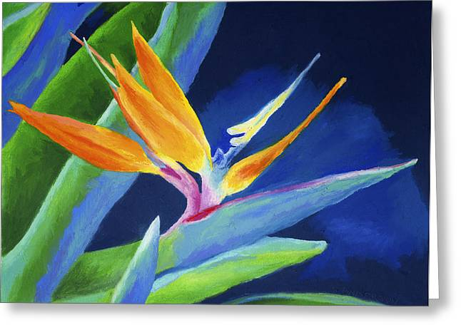 Tropical Flower Greeting Cards - Bird of Paradise Greeting Card by Stephen Anderson