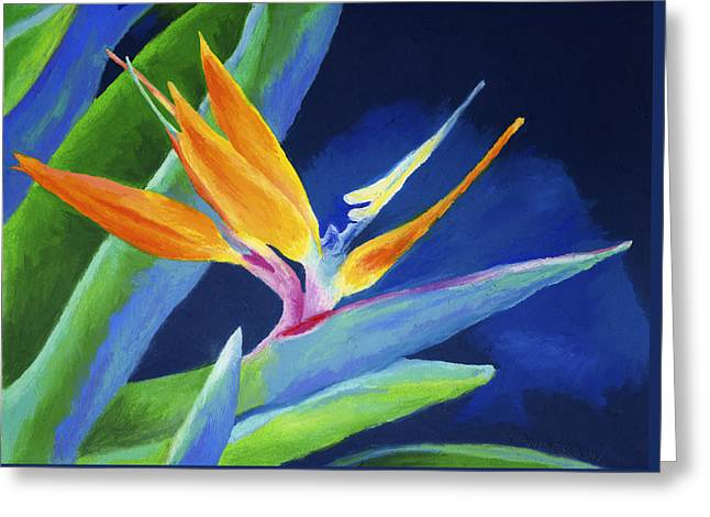 Bold Color Greeting Cards - Bird of Paradise Greeting Card by Stephen Anderson