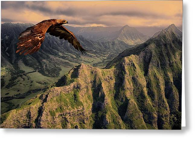 Cabin Wall Greeting Cards - Bird of Prey 310 Greeting Card by Movie Poster Prints