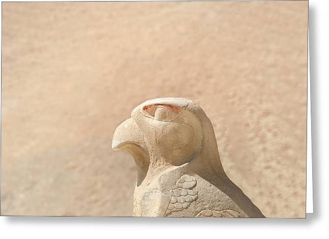 Horus Greeting Cards - Bird of prey.. Greeting Card by A Rey