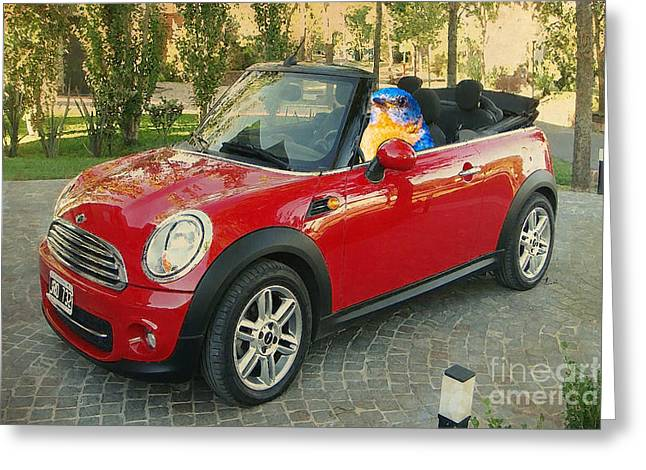 Bluebird Posters Greeting Cards - Bird on Mini Cooper Greeting Card by Pablo Franchi