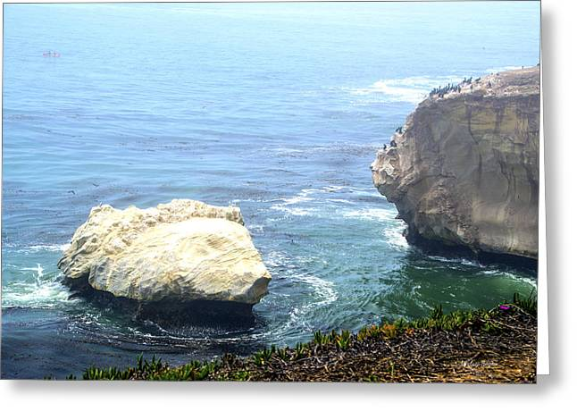 Beach Photos Digital Greeting Cards - Bird Rock of Pismo Beach On A Foggy Day Greeting Card by Barbara Snyder