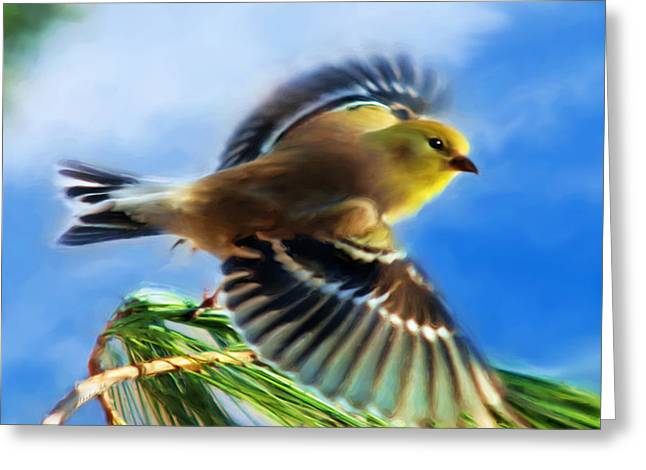 Soaring Paintings Greeting Cards - Bird Wings Of Song Greeting Card by Christina Rollo