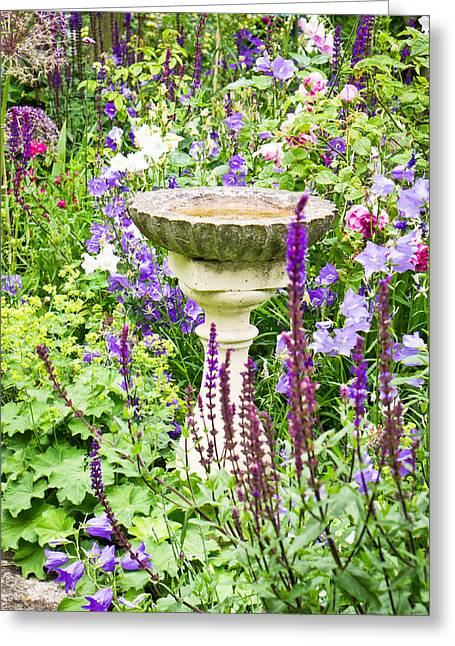 Birdbath Greeting Cards - Birdbath Greeting Card by Tom Gowanlock