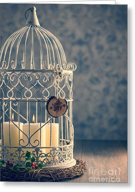 New Year Greeting Cards - Birdcage Candles Greeting Card by Amanda And Christopher Elwell