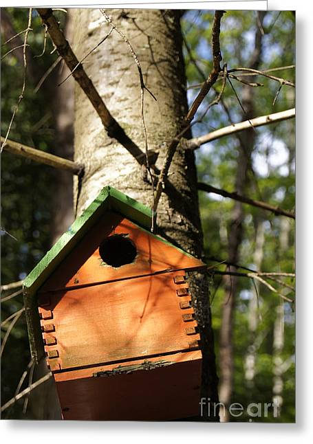 Birdhouse By Line Gagne Greeting Card by Line Gagne