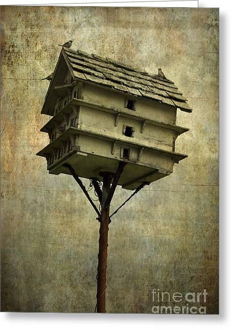 Chromatic Greeting Cards - Birdhouse I Greeting Card by David Gordon