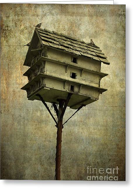 Chromatic Greeting Cards - Birdhouse I Greeting Card by Dave Gordon