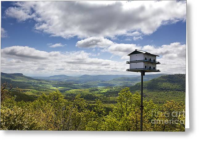 Arkansas Greeting Cards - Birdhouse Overlooking the Buffalo River Canyon in Arkansas Greeting Card by Brandon Alms