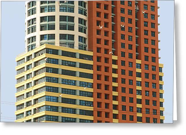 Asien Greeting Cards - Birds and Building Greeting Card by Pete Marchetto