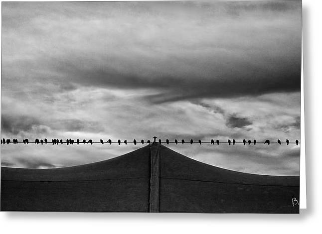Cloudscapes Greeting Cards - Birds Greeting Card by Bob Orsillo