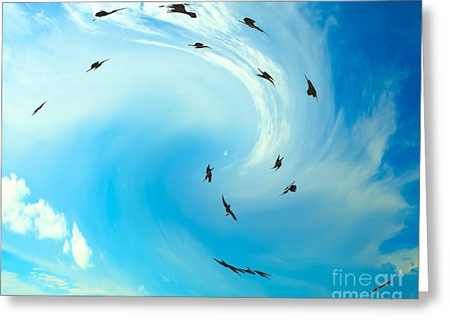 Skyclouds Greeting Cards - Birds Greeting Card by Bruce Bain