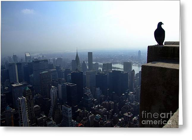 View Framed Prints Greeting Cards - Birds Eye View of New York Greeting Card by Nishanth Gopinathan