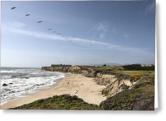 Birds Fly Over Half Moon Bay  Greeting Card by Carol M Highsmith