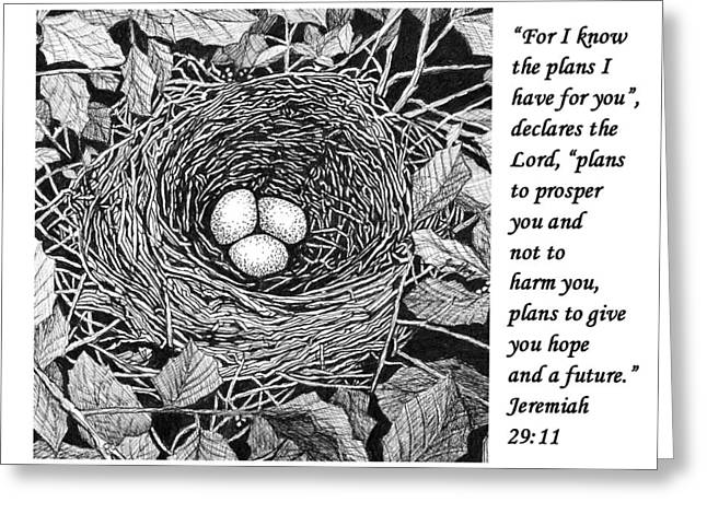 Janet King Drawings Greeting Cards - Birds nest with scripture Greeting Card by Janet King