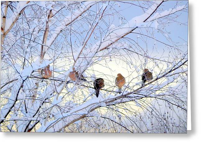 Wintry Greeting Cards - Birds of a Feather Greeting Card by Karen Cook