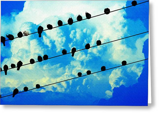 Social Relations Greeting Cards - Birds of a Feather Greeting Card by Mike Flynn