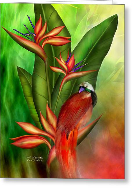 Birds Of Paradise Greeting Card by Carol Cavalaris