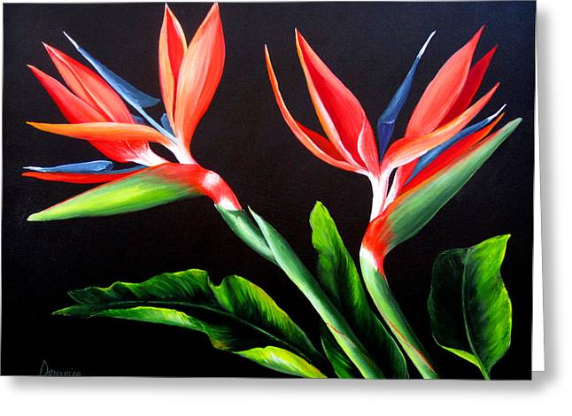 Dominica Alcantara Greeting Cards - Birds of Paradise Greeting Card by Dominica Alcantara