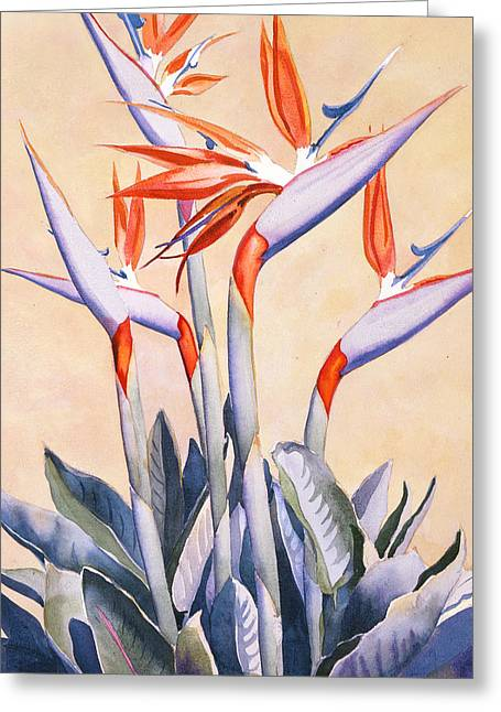 Tropical Plants Greeting Cards - Birds of Paradise Greeting Card by Mary Helmreich