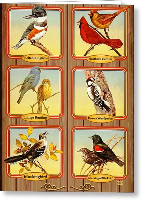 Possum Greeting Cards - Birds of Possum Kingdom Greeting Card by Jim Sanders