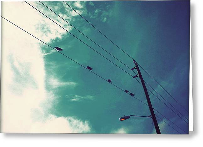 Bird On Tree Greeting Cards - Birds on a Wire I Greeting Card by Chris Andruskiewicz