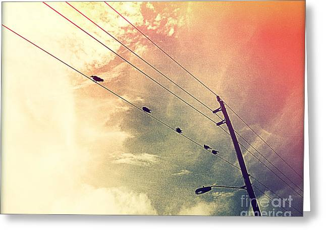 Bird On Tree Greeting Cards - Birds on a Wire II Greeting Card by Chris Andruskiewicz