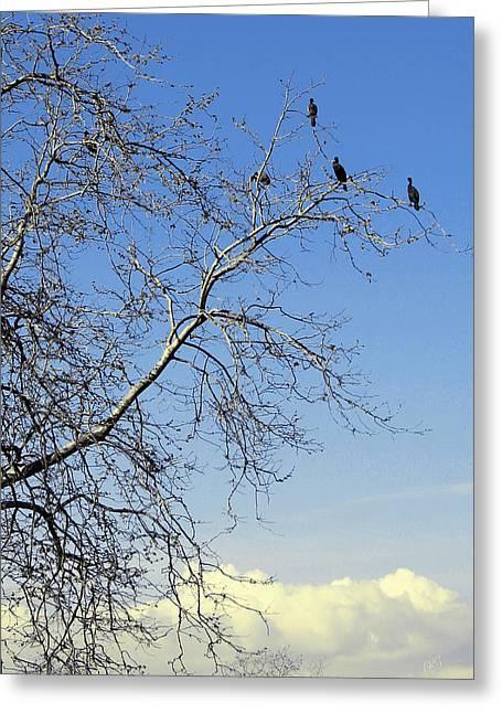 Bird On Tree Greeting Cards - Birds On Tree Greeting Card by Ben and Raisa Gertsberg
