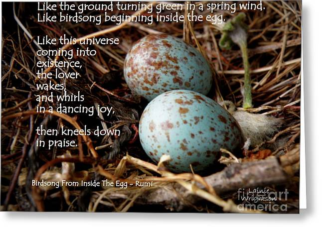Birdsong From Inside The Egg Greeting Card by Lainie Wrightson